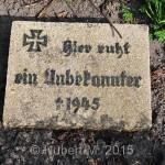 KGST.Großenbrode,OFH.alter FH.2.W.K.Teichstr. 25.04.2013 (2)