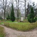 KGSt.Dassow,OFH.Teilgartenstr.2.W.K.61.Kriegstote,11.UKS. 26.04.2013 (2)